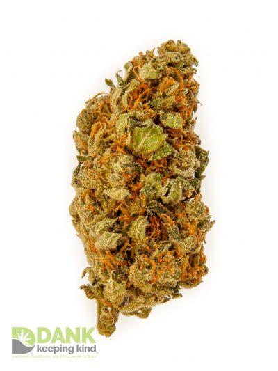 Blue Dragon Cannabis at DANK Dispensary