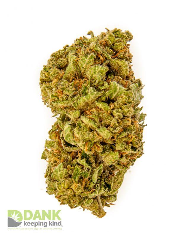 Durban Poison from DANK Dispensary