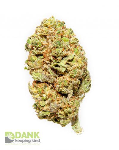Lucinda Williams Cannabis from Dank Dispensary