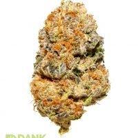 Purple Punch Cannabis from DANK Dispensary