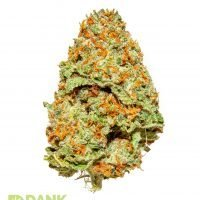 Super White Cannabis from Dank Dispensary