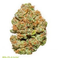 Witches Weed Cannabis from Dank Dispensary