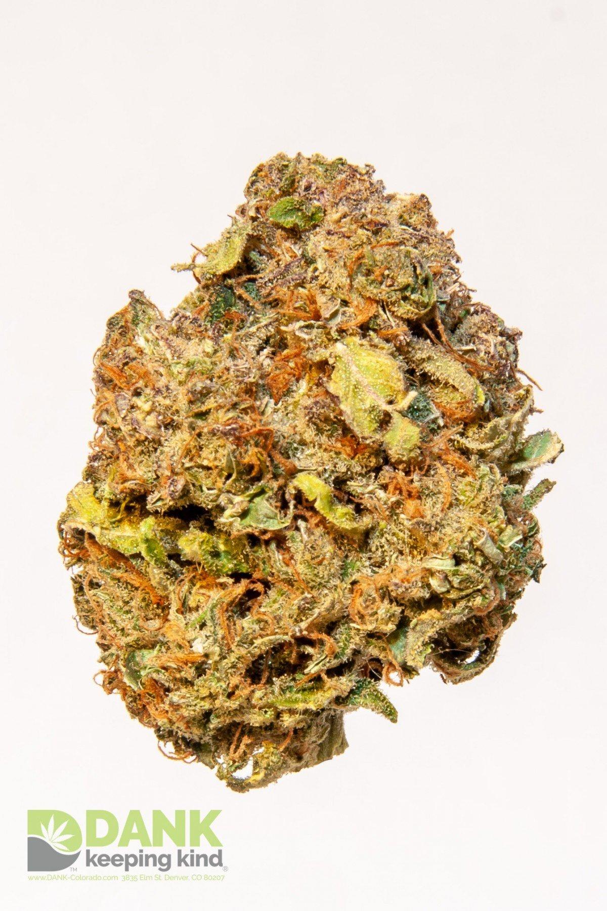 Cannatonic CBD Rich Cannabis at Dank Dispensary