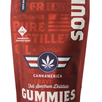 CannAmerica Gummies at DANK Dispensary