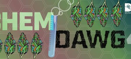 ChemDawg4