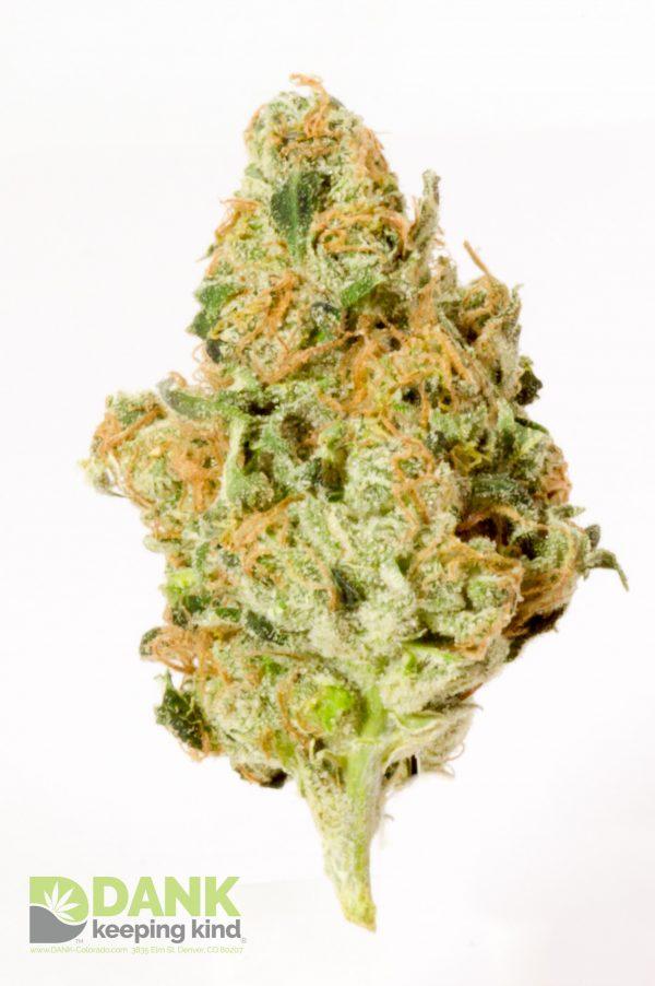 Headband Cannabis at DANK Dispensary