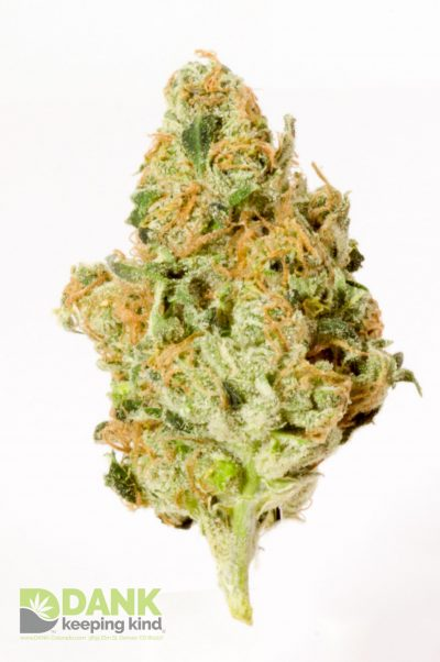 Headband Cannabis at DANK Dispensary
