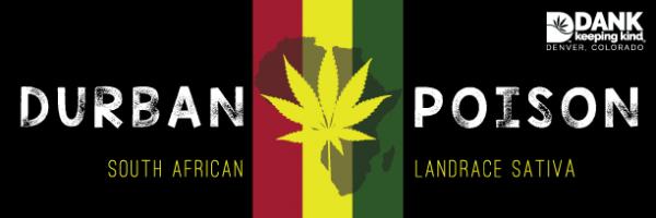 Durban Poison from DANK