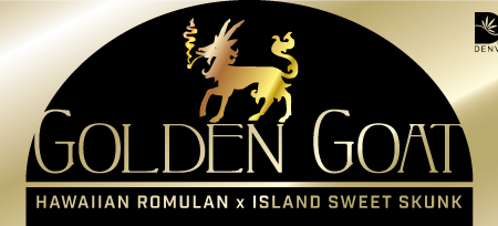 GoldenGoat