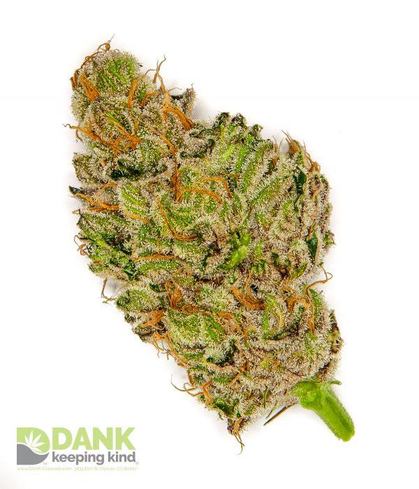 Larry OG Kush from DANK Dispensary