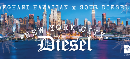 NYCDiesel