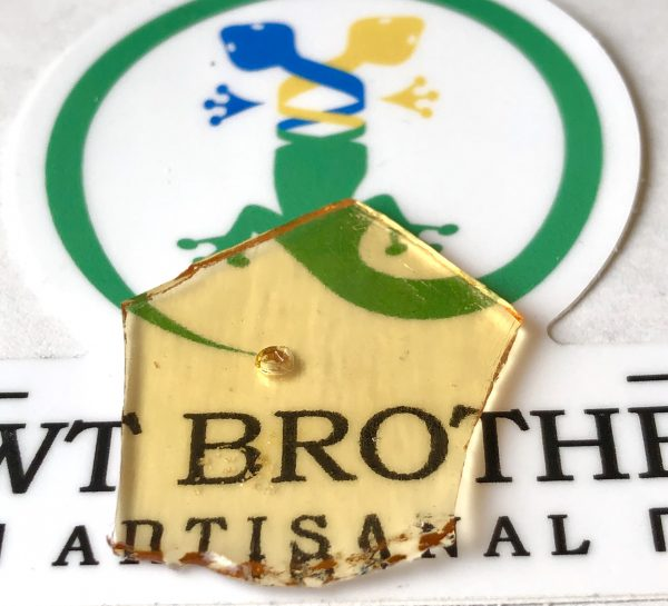 Newt Brothers Axolotl Shatter Concentrates at Dank Dispensary