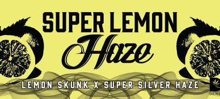 SuperLemonHaze
